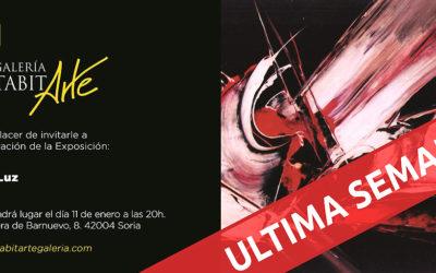 EXPOSICIONES | Arte y Luz · Viola | última semana