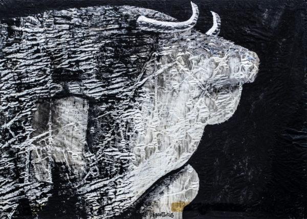 Toro Vaquero Turcios