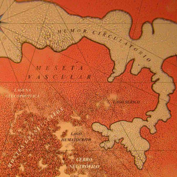 Mapa interior V